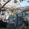 Courses and Events for 2014 at Monkton Wyld Court