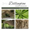 Dillington News January 2017