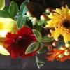 Bringing your autumn garden inside