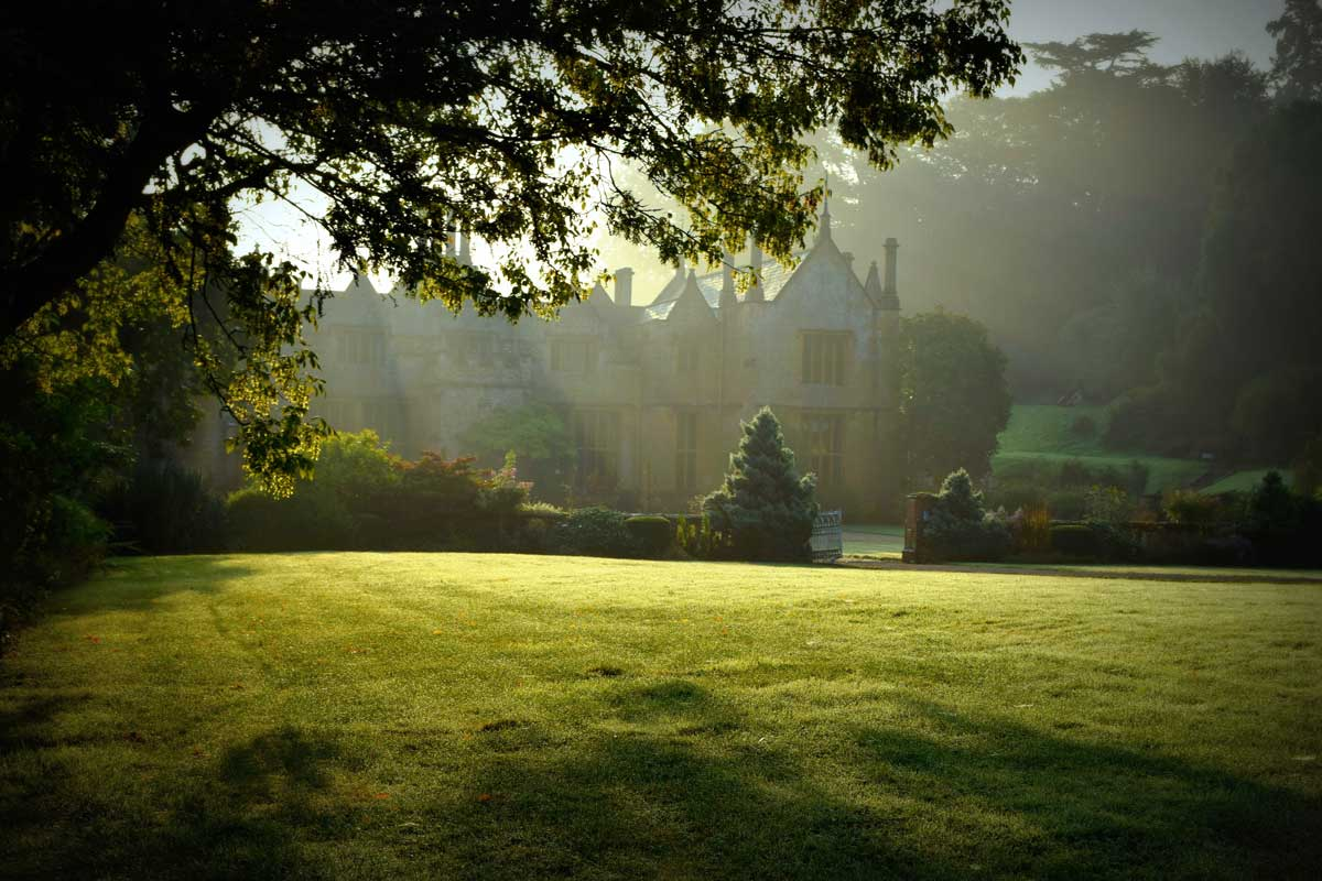 This stunning image was taken by tutor Amelia Marriette on her last visit to Dillington